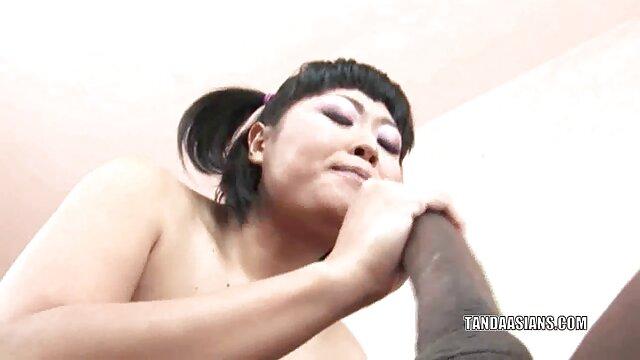 Pornografia sem registo  A miúda gira é dura quero ver vídeo pornô das gordinhas
