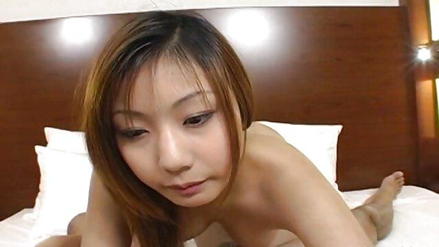 Pornografia sem registo  Tesouro para vídeos pornô de mulheres gordas todos